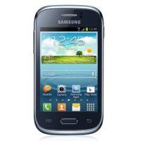 Качественный и быстрый ремонт телефона SAMSUNG GALAXY YOUNG S6310